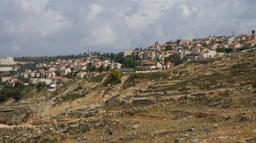 Settlement expansion moving down the hillside, near Al Khalayleh, outside Jerusalem.